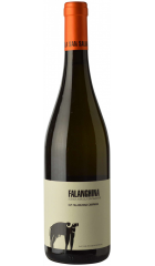 Вино San Salvatore, Falanghina, Campania IGT, 2019, 0.75 л