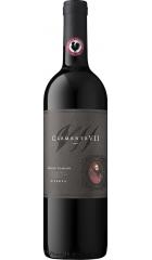 """Вино Castelli del Grevepesa, """"Clemente VII"""" Riserva, Chianti Classico DOCG, 2015, 0.75 л"""