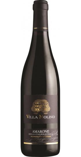 """Вино Sartori, """"Villa Molino"""" Amarone della Valpolicella DOC, 2015, 0.75 л"""