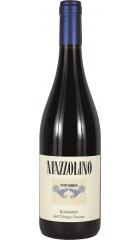 "Вино Tenuta Mazzolino, ""Mazzolino"" Bonarda, Oltrepo Pavese DOC, 0.75 л"