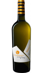 "Вино Collefrisio, ""Vignaquadra"" Pecorino, Terre di Chieti IGT, 2019, 0.75 л"