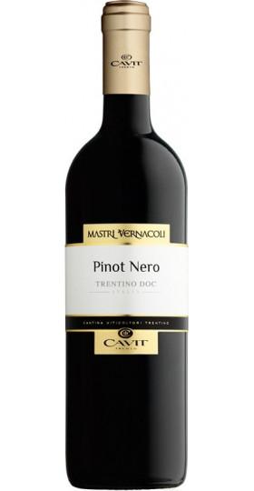 """Вино """"Mastri Vernacoli"""" Pinot Nero, Trentino DOC, 2018, 0.75 л"""